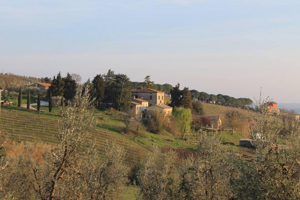 Agriturismo a Orvieto - Fattoria La Goccia