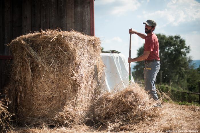 produzione-vendita-prodotti-contadini-orvieto